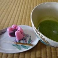 梅の花巡りとお茶づくしの2日間