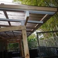 ボランティアさんが犬舎に大きな屋根を作ってくださいました