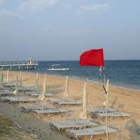 石垣島は今日も寒々