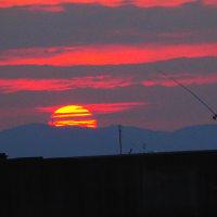 『日の出』 棹を振る