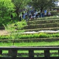 浅川・栃谷戸公園