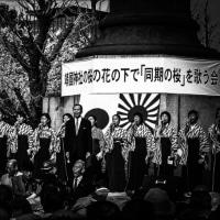 同期の桜に同期する日本会議