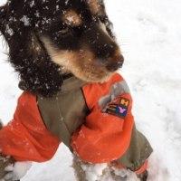 初めての雪遊び