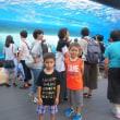 サンシャイン水族館へ