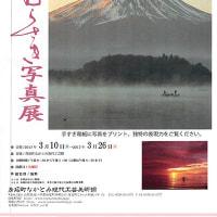 西嶋手すき紙 に写真をプリントした写真展が開催中。