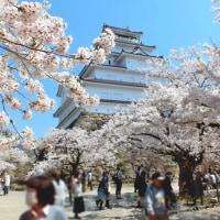 卒業記念に「鶴ヶ城へ花見」