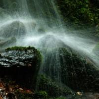 6月15日  清流の滝
