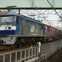 2017年3月28日 東海道貨物線 東戸塚 EF210-116 8052レ