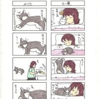 猫の4コママンガ41