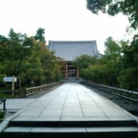 「近畿三十六不動巡り」智積院・京都市東山区にある真言宗智山派総本山の寺院である。寺号を根来寺という