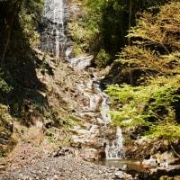 篠山の白滝