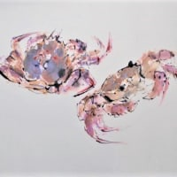 魚介類の絵・蟹