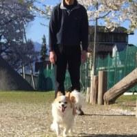 桜と幸ちゃん