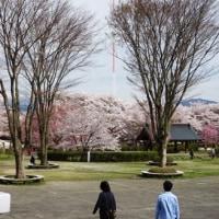 今さらながら4月の車旅です!花の丘公園と春日城址<8>