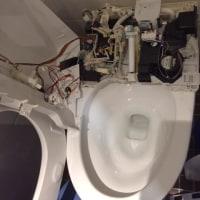 トイレの頭脳