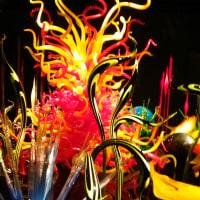 富山市ガラス美術館 キラリ