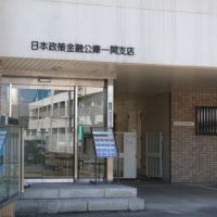 一関市城内のヨウシュヤマゴボウ(洋種山牛蒡) 2016年9月21日(水)