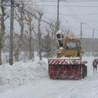 札幌市 除雪「パートナーシップ制度」