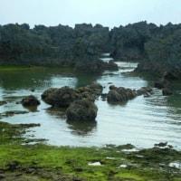 奄美4島めぐりの旅③ 沖永良部島観光後フェリーで徳之島へ(鹿児島)
