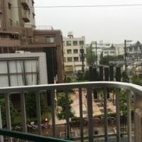 今、台風の暴風雨圏内  ^^;
