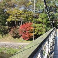 フレッシュパークからりの紅葉(内子町)