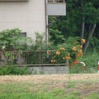 小林さん 栃木県 プレステージCCで 優勝しました