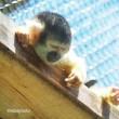動物園に行こう〜旅PHOTO女子倶楽部編