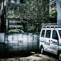 【Aug_17】裂開する緑_OVERGROWTH#4
