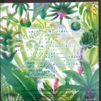 ☆Spamusu Hawaiian CD☆