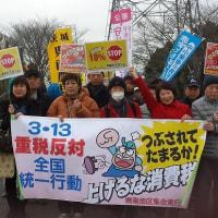 3・11重税反対全国統一行動。400人を超える人が声を上げデモ行進!
