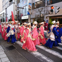 町田はよさこい祭りで賑やかでした