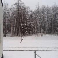 おっさんと雪の日の雑記。