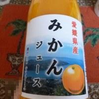愛媛県産みかんジュース