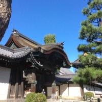 ご当地みどり   京都の街ナカみどり