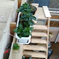 納戸作りはじめました。