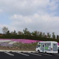道の駅おおとうを訪ねて、芝桜今と昔(数年前)
