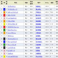 [フローラS(G2)]12番人気モズカッチャンV、牝馬も混戦!?
