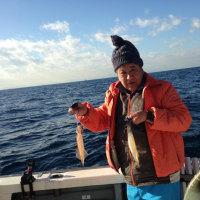 早出し金目鯛船でアコウ鯛も釣れちゃった!