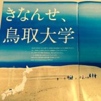 砂丘の広告