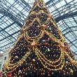 1年ぶりの東京ディズニーランド クリスマス
