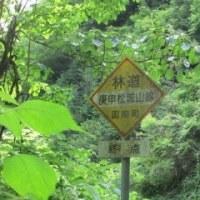 頭の中は北海道でいっぱいだから箱根周辺の林道へ