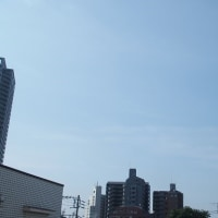 今朝(6月23日)の東京のお天気:晴れ、6月(後半)の作品:寄り添う二人