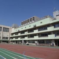 墨田区の小学校をご紹介【1】今日は「緑小学校」!