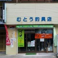 8月21日 長良川 亀尾島川 鮎釣り!