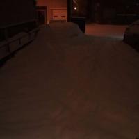 明日は病院なのに…雪が、雪が雪がーーーもう雪はいいってばー(;´Д`) 今の外の景色追加