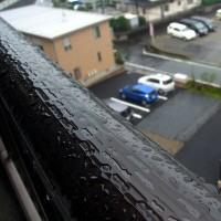 10月17日 雨降りと平日休み