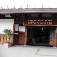 神戸どうぶつ王国