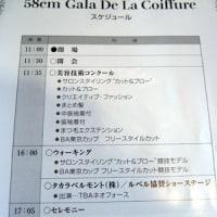 美容技術コンクール【ガラ・ド・ラ・コワフュール】