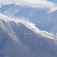 鳥海山のある風景 1月