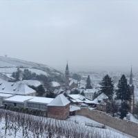 アルザスの田舎町リボーヴィレ(Ribeauville)